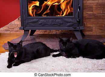 Warm winter fire