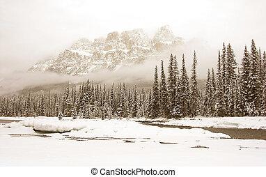 冬天, 風景