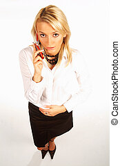 businesswoman - Sexy businesswomen isolated on white talking...
