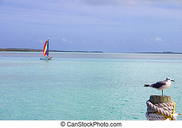 tranquility - small sail boat on the ocean off a Caribbean...