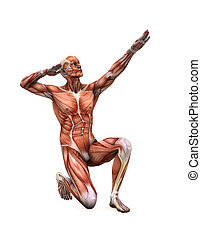 posing muscles - muscle man in strange poses