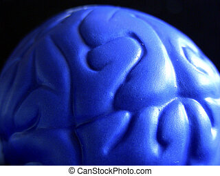 Blue Brain - Plastic representation of the cerebral cortex...