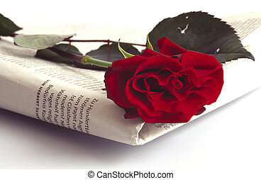 newspaper and rose - a sign of love in the morning; or a...