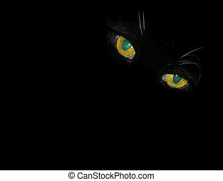 Peering Cat Eyes - A cat waits patiently in the dark,...