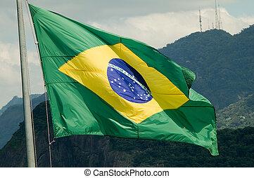 Flag - Brazilian Flag
