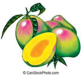 Mango - High resolution - Digital Mangoes Photoshop made See...
