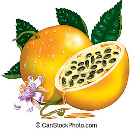 PASSION FRUIT - High resolution image, made by photoshop and...