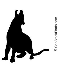 Black panther - Silhouette of panther