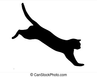 Cat jumping - Silhouette of wild cat