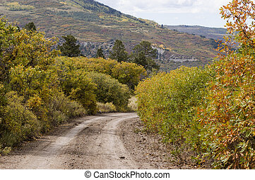Forest Service Road - Ouray County Road 5 in the San Juan...