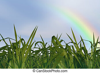 Grass - Long grass with a rainbow