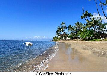 Tropical coastline - coastlin of Lahaina,Maui,Hawaii