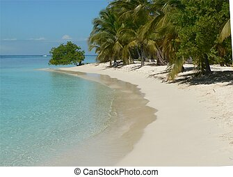 tropical paradise - Corral reef island in the Caribbean