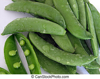 Sugar Snap Peas - Closeup of sugar snap peas. (Pisum...