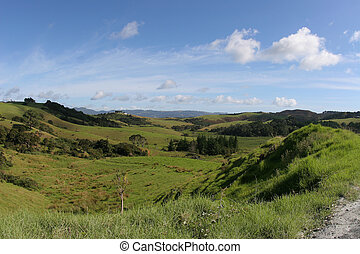 scenic view - overlookign hilly grassy fields