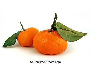 2 oranges with stems - a pair of fresh mandarin oranges with...
