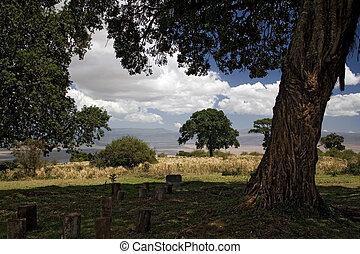 africa landscape 014 ngorongoro