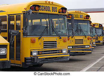 School Buses - Group od School Buses