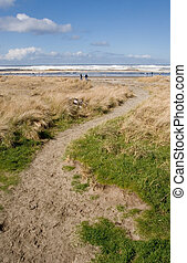 Path to the Beach - Photo of a sandy path leading to the...
