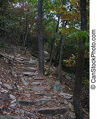 Uphill climb - Rocky trail