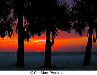 Clearwater Sunset - Sunset at Clearwater Beach, Florida