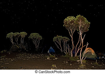 kilimanjaro 006 shira hut camp tent night view