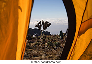 kilimanjaro 012 view from tent.