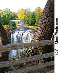 Webster Falls - Beautiful view of Webster Falls through the...