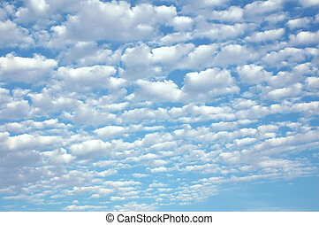 Fluffy Clouds - Beautiful fluffy clouds on a spring day.
