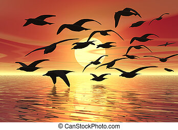Flock - A flock of birds silhouetted against the sunset