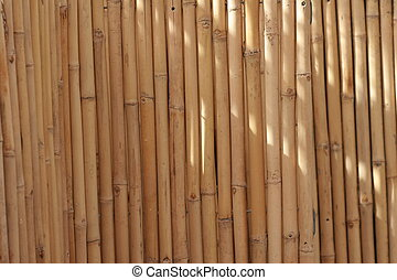Bamboo - fence of bamboo