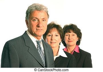 business team - executive business team