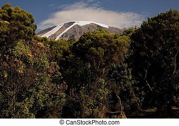 kilimanjaro 031 mweka huts camp