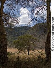 africa landscape 042 ngorongoro