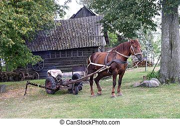 Rural Landscape - A rural landscape in Lithuania