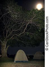africa landscape 032 ngorongoro night view