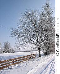 Winter Scene - Wnter landscape
