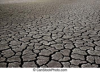 Desert - Dry Mud Field