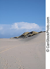 Sand Dune - sandy dunes on the island of Sylt
