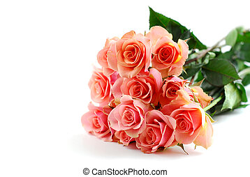Pink rose bouquet on white - Bouquet of pink roses on white...