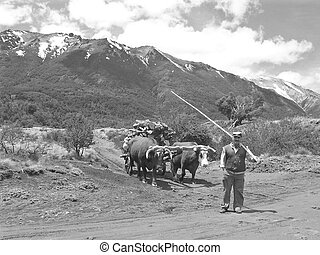 Traditional Gaucho in Patagonia Argentina