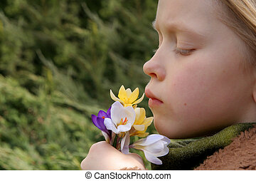 Spring girl - Little girl looking at a bunch of crocuses