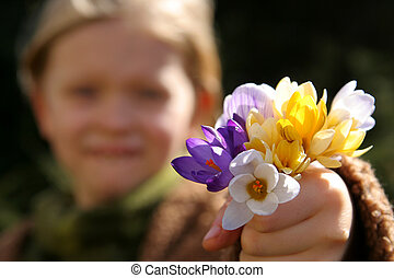 Spring girl - A bunch of crocuses against a background of a...