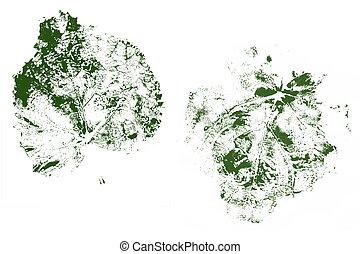 Leaf Prints. - Leaf prints.