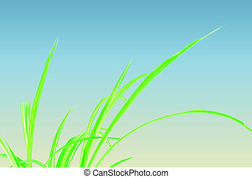Green Grass with blue and yellow
