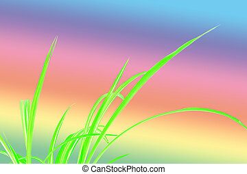 Green Grass with multicolor background