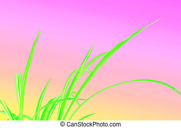 Green Grass with pink background
