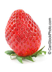 fresh delicious strawberry standing on its stalk