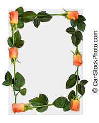 Rose frame 2 - Sheet of paper with orange roses, love letter...