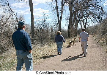 People Walking - People out for a walk with their dogs